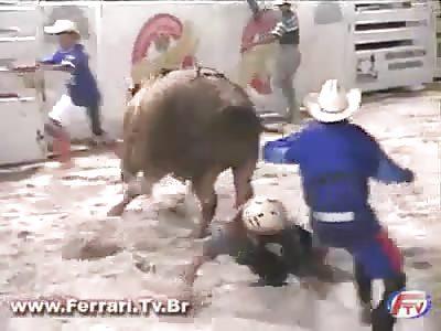 Bull vs Elephant