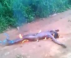Short Ending to a Rapist being Burned Alive