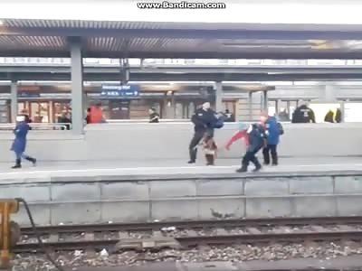 shit Police dog