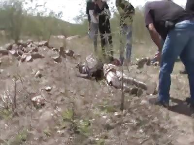 GARBAGE COLLECTOR FOUND DEAD - RIGOR MORTIS