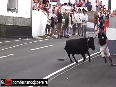 VIVA EL TORO!