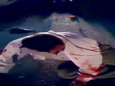 BEAUTIFUL AUTOMOBILE ACCIDENT