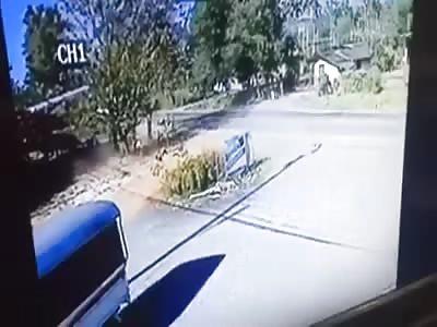 Bike Crashes into a Tree