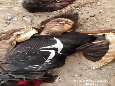 Rats Daesh Hezbollah Brigades