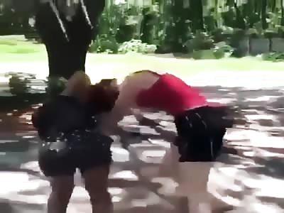 LOL WANNA BE TOUGH GIRL GETS HER ASS BEAT BAD