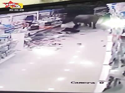 a buffalo ran into a small supermarket knocked a woman down in Jiangsu