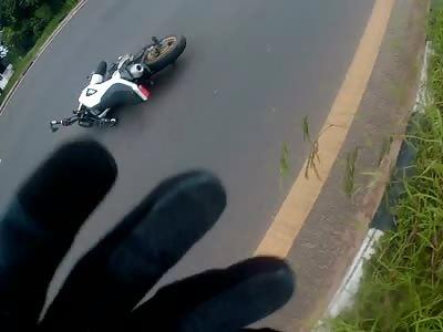 Motorbike flattens dog