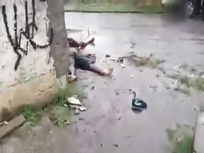 massacre in brazil
