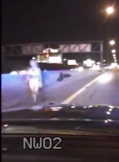 Trooper Helps save Bikini-Clad Woman Running in I-15 Traffic .