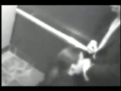 Dude Can't Wait Fucks a Hooker in the Elevator