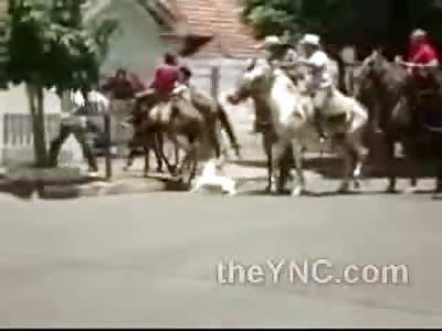 Pit Bull Attacks Horse Like a Boss