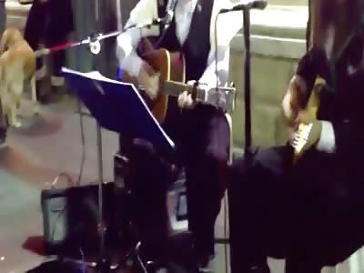 The incredible peyyot Hasidim