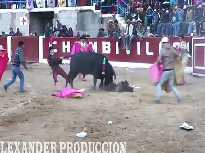 Dead Bull Fighter