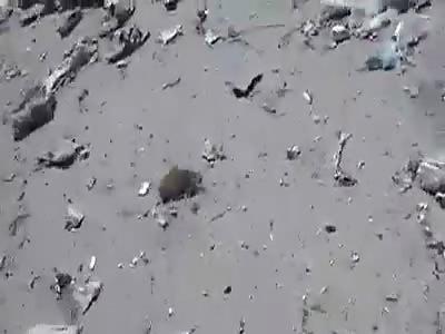 DESPAIR SCENES AFTER BOMBING