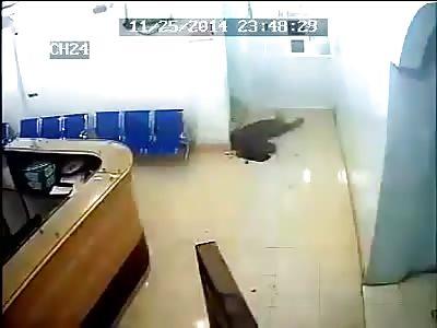 MURDER IN YEMEN